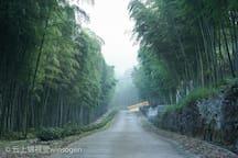通往古寺的道路