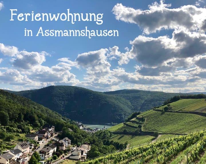 Ferienwohnung Oberes Mittelrheintal