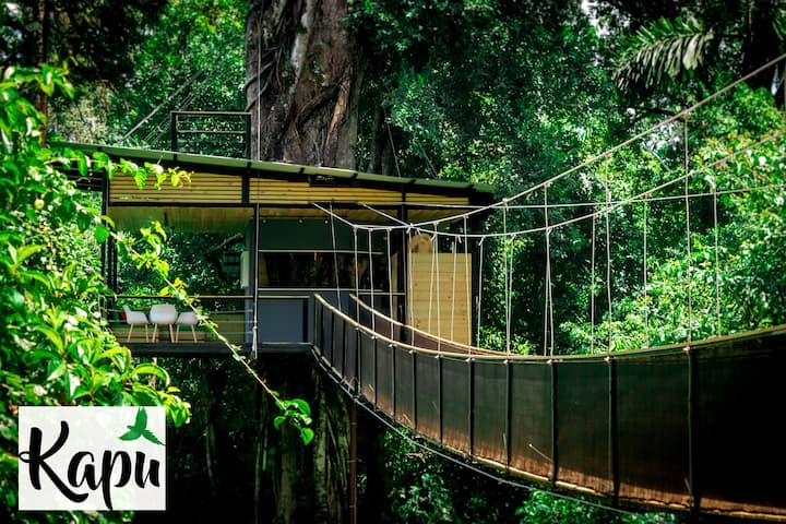 The Most Spectacular Tree House in Costa Rica