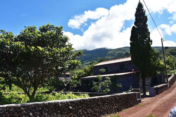 "Casa ""Cantinho do Avô"" - Azores - Willa"