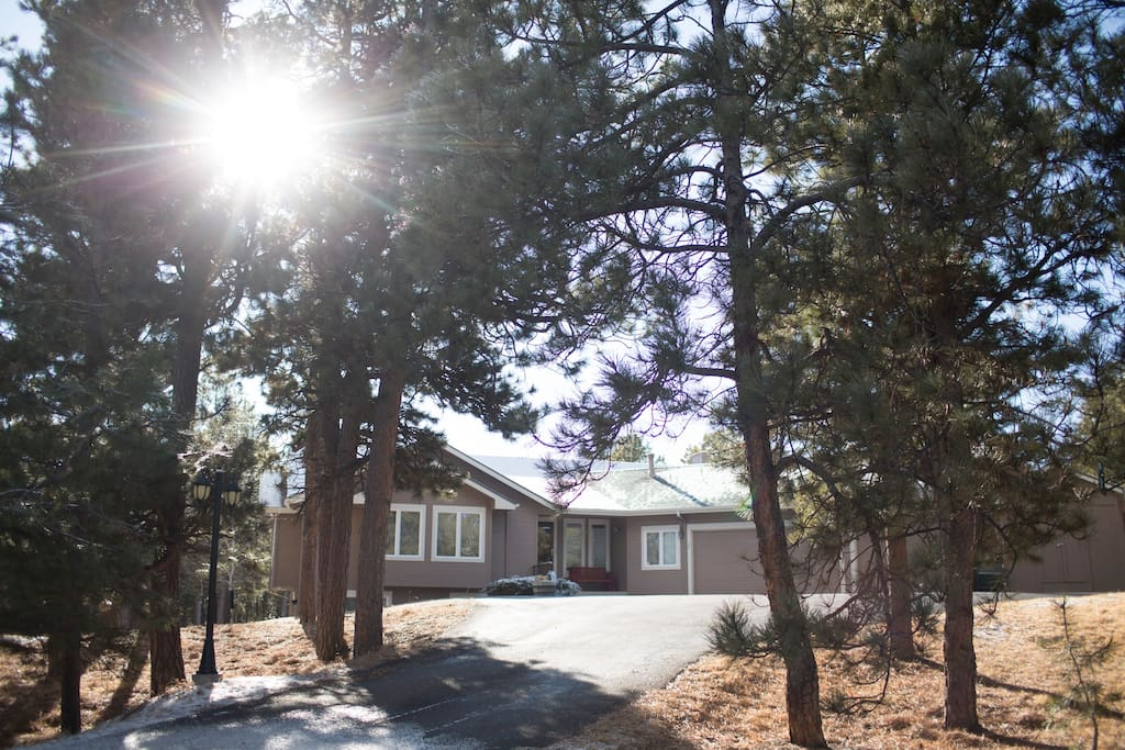 Convenient paved driveway leading off main road, through the trees to the house.