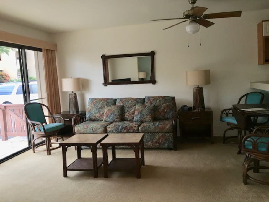 Living Room of the one bdrm Condo, two bedroom layout may be a bit different