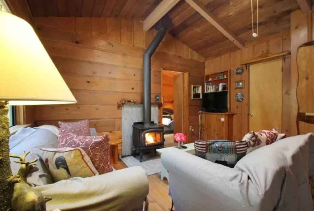 Cozy living room with wood-burning stove.