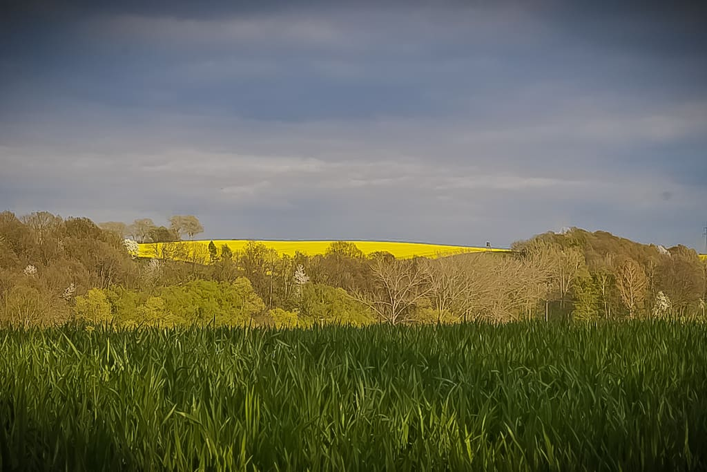 Ein Blick in die Landschaft direkt hinter unserem Haus.