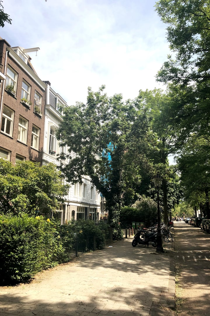 Our favorite street in bloom