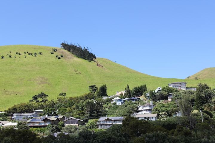 LEED Platinum Hillside Retreat