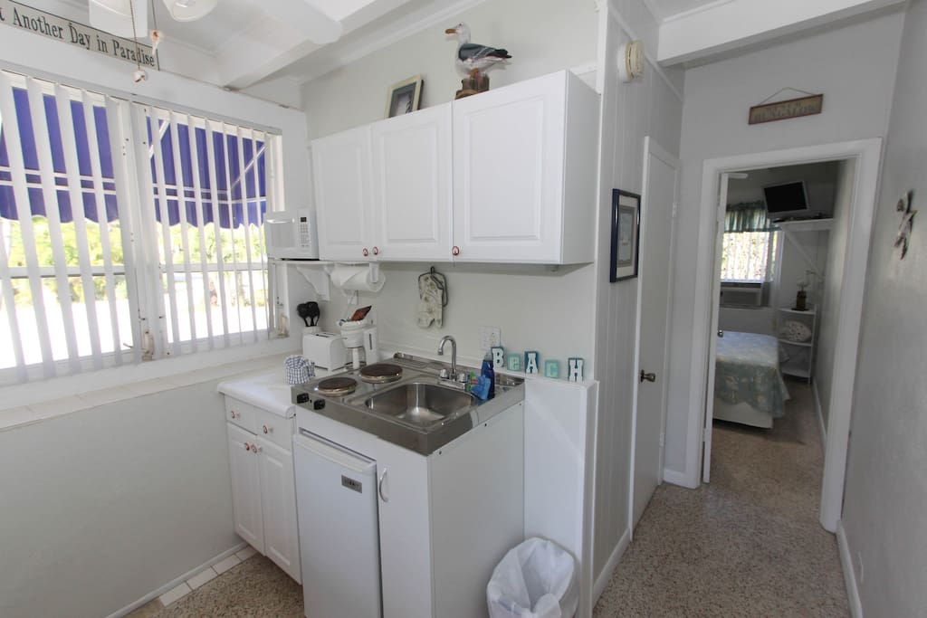 Kitchen area, with mini fridge and 2 burner stove
