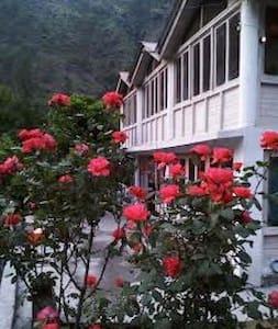 Himachal Teerthan Valley Trout Farm B & B - Apartment