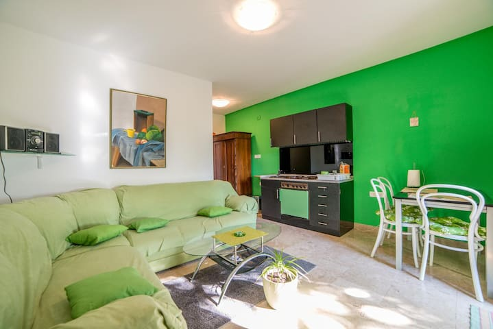Apartment Pud Oreh / One Bedroom
