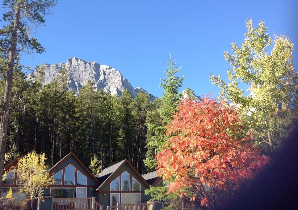 Tall Pines Cabin In Canmore Banff Houses For Rent In