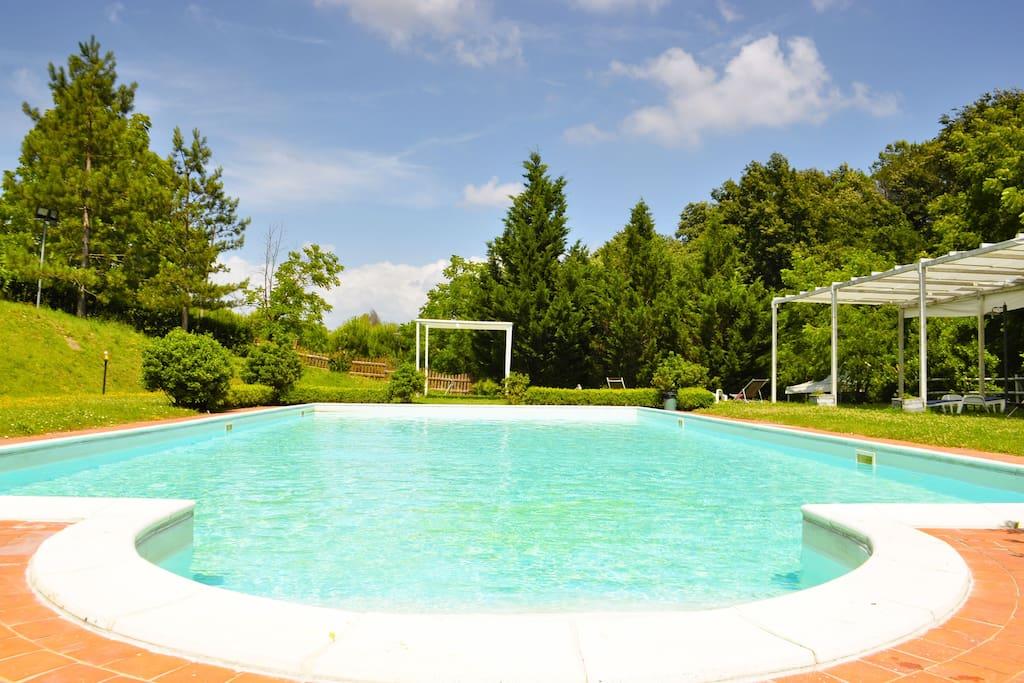 B b tra le colline con piscina chambres d 39 h tes louer - B b con piscina toscana ...