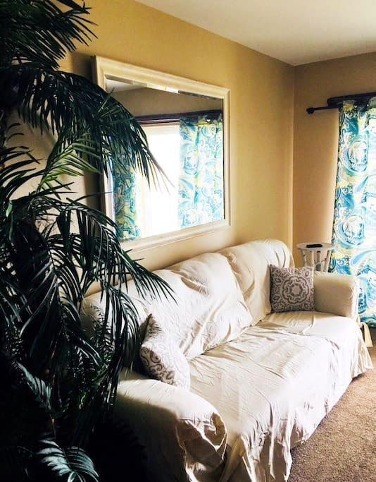 Living area- regular sofa- not a sleeper.