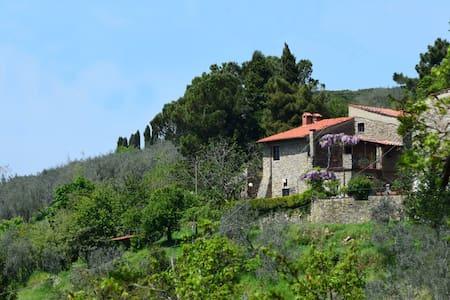 Casale Del Chianti, sleeps 7 guests - Castelfranco di sopra