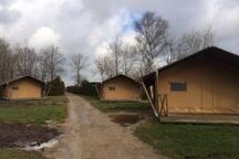 Luxe Tenten te huur  achter ons waterchalet