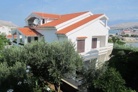 Apartments Valentić / Studio A1 - Pag - Appartement