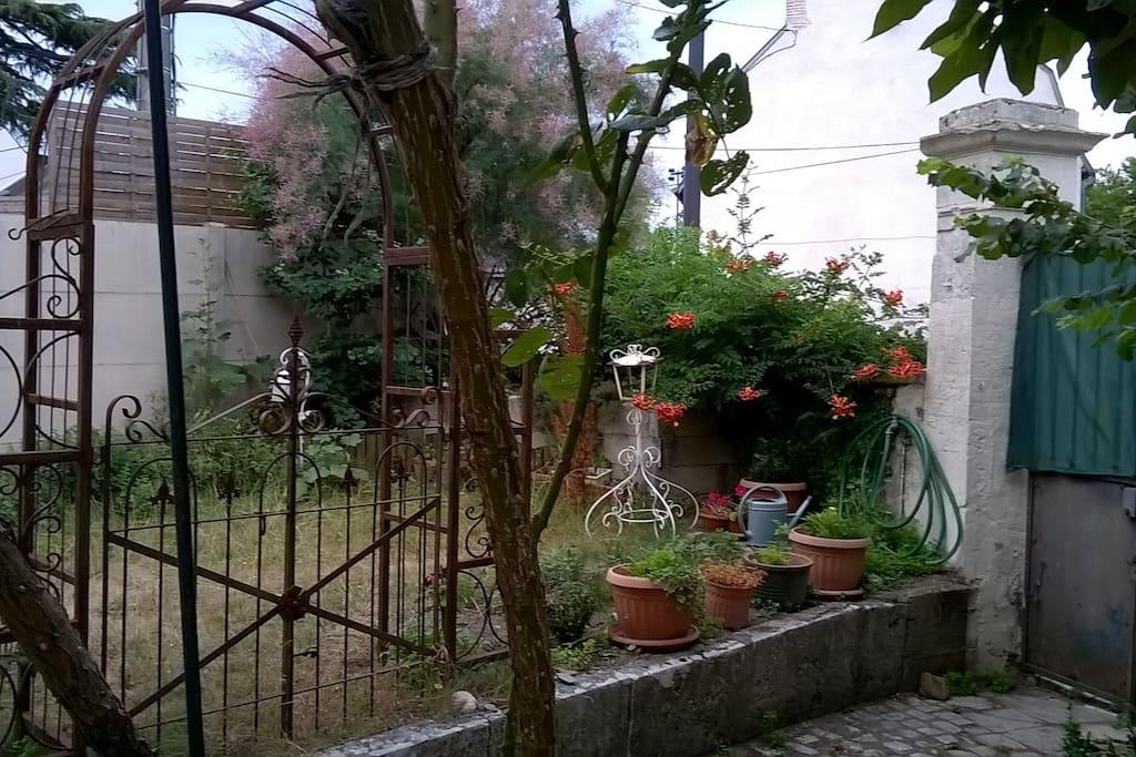 Un jardin appréciable en  ville