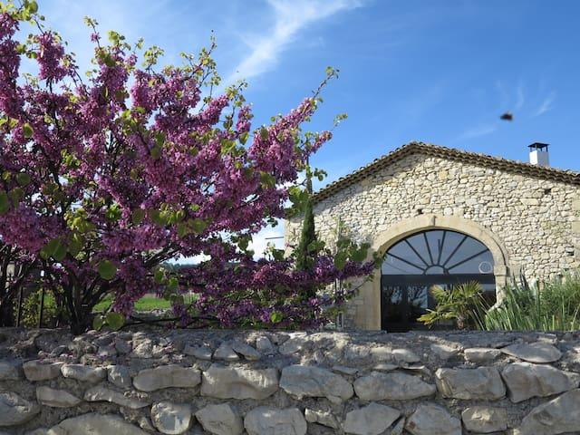 Beau Mas avec piscine sud de France - Montmirat - Rumah