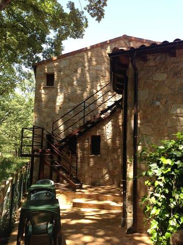 EN PLENA SIERRA DE FRANCIA (A 5KM DE LA ALBERCA) - Nava de Francia - Apartment