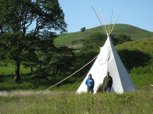 Hafod Tipi in its own wild meadow