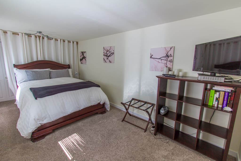 Large master bedroom with down comforter and TV.