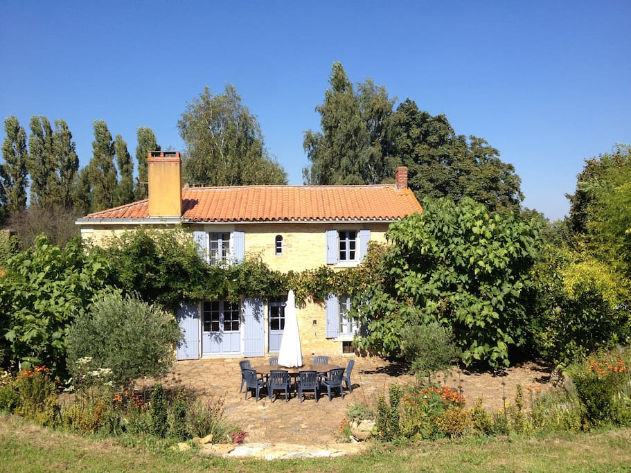 large suntrap terrace with olive and fig trees and table for 12.
