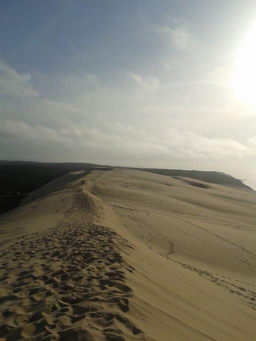La dune du pyla (30 mn)
