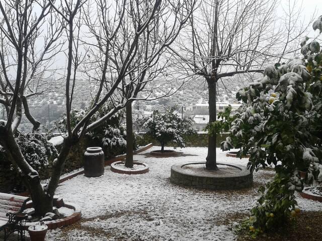 El patio. La nieve
