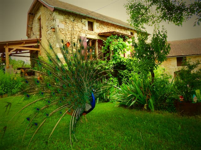 La Ferme du Bost / L'Erable - Castelnaud-la-Chapelle - Bed & Breakfast