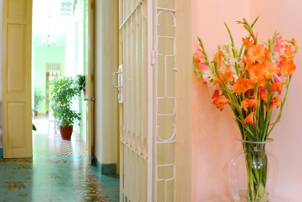 Flores que dan la bienvenida a los huéspedes.