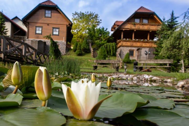 Apartments Korosec Mozirje - Yellow apartment