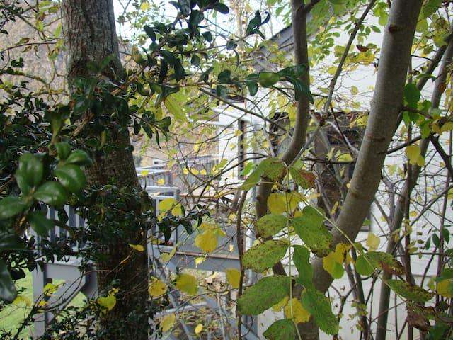 La maison dans les arbres - Grézian - Casa