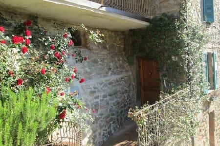 Ma maisonnette en Toscane 2/4 pers. - Badia A Ruoti
