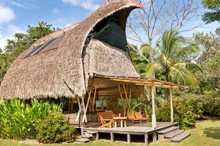 Osa Beachfront Bamboo House  - Puerto Jiménez