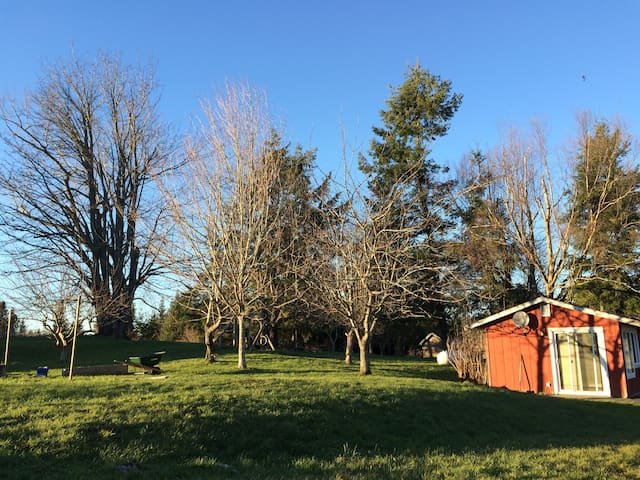 Idyllic, country guest house - Bellingham - Pis