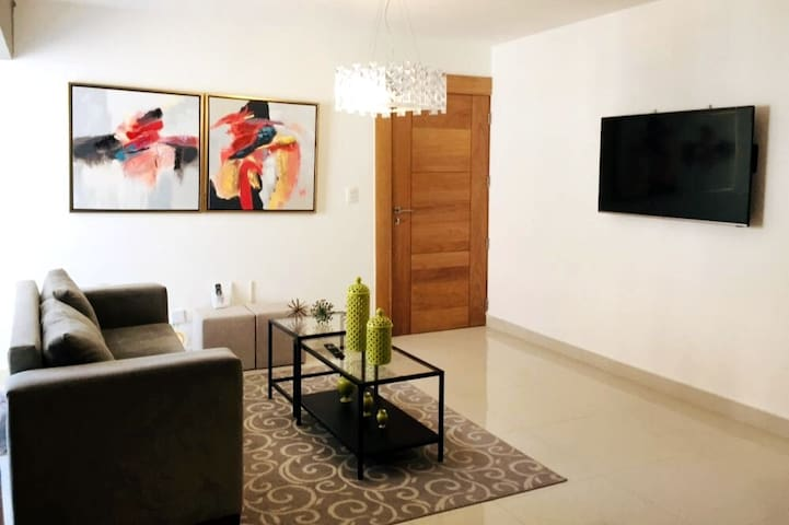 Bright and Beautiful Apartment in Central Santiago
