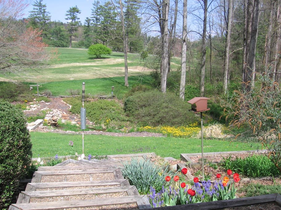 Late spring view from back deck overlooking the creek with small waterfall, and golf course