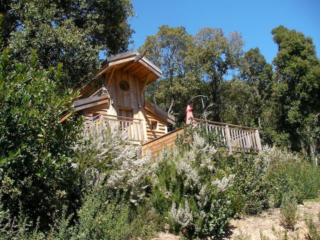 cabane sur pilotis écologique 2