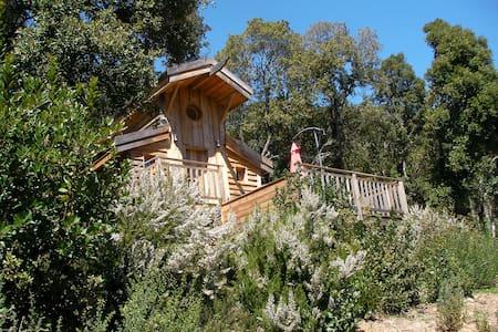 cabane sur pilotis écologique 2 - Erdhaus