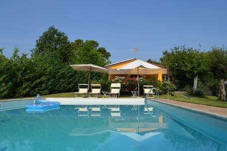 Cozy Cottage - Monte San Savino - Monte San Savino