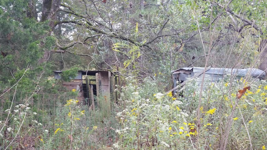 Scenic, Rustic Nature Getaway - Roanoke - Casa