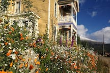 The front of the house, Sept 10. Wild Flowers in full bloom and some of the first snows on Mt Bross behind the house.