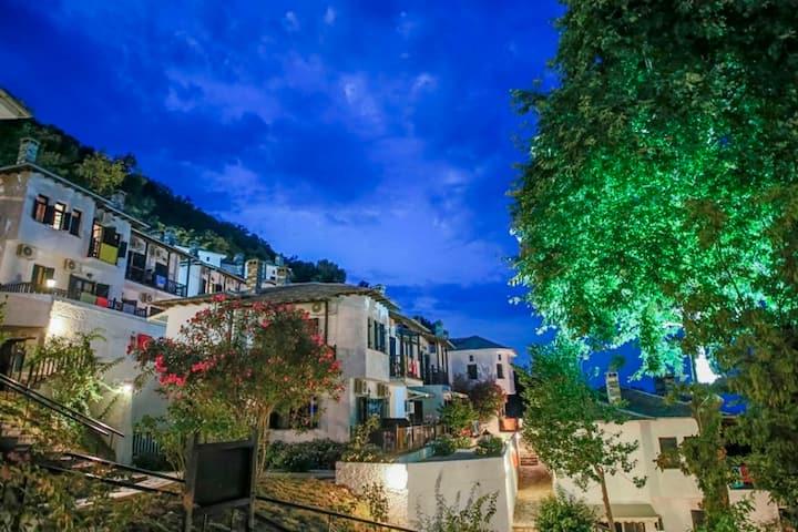 Ζήστε την εμπειρία στο Pilio sea horizon hotel