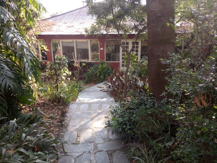 The Jungle Bungalow #Two
