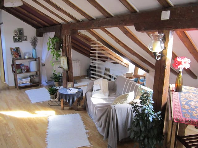lovely and peaceful studio - San Lorenzo - Apartamento