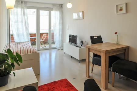 comfortable bright apartment - Tübingen