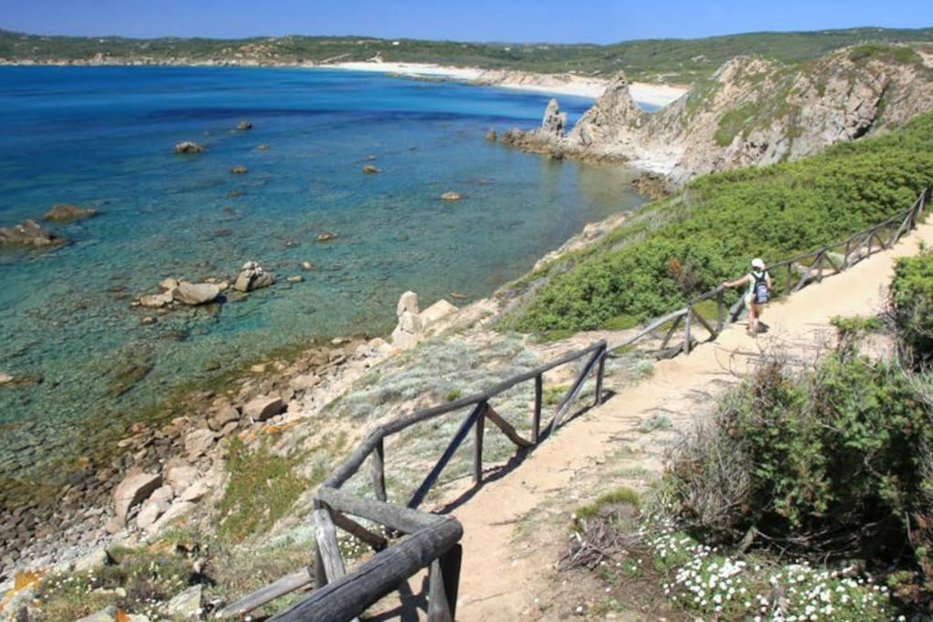 Sleeps low cost camping cars caravanes louer rena for Low cost sardegna