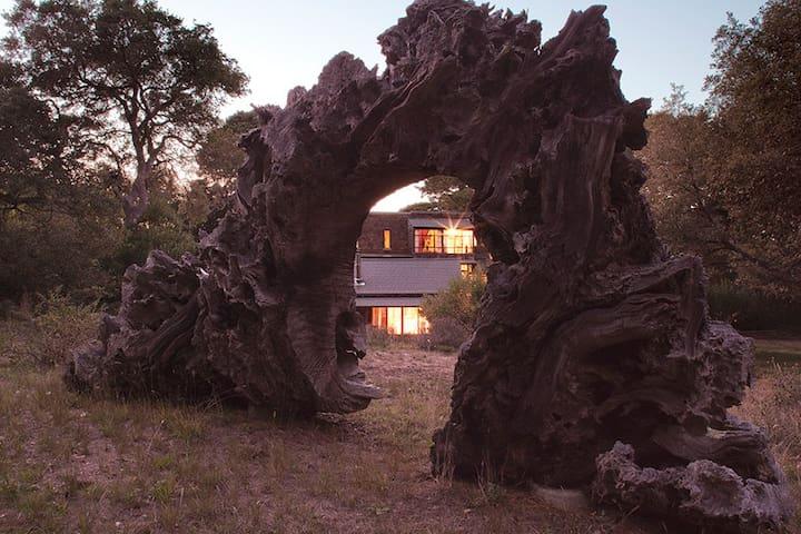 Van der Ryn Eco Refuge - Architecture in Nature