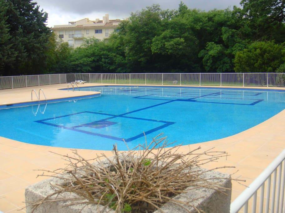 Grande piscine réservée aux résidents