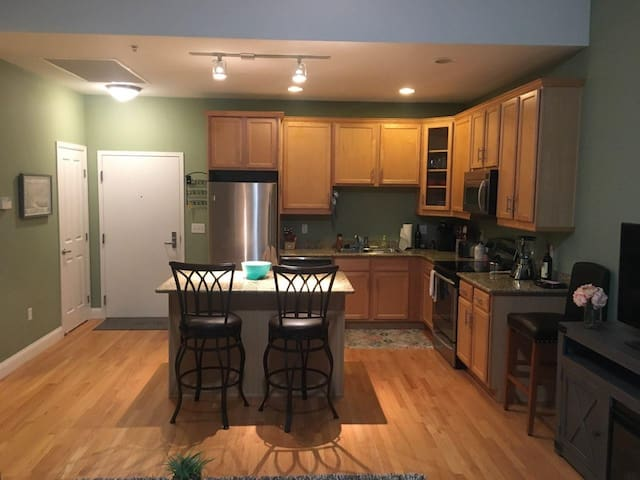 Lovely condo near the Capitol-30 day minimum stay