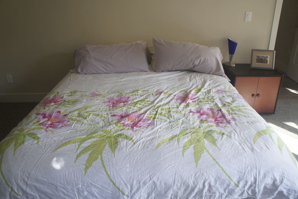 Comfortable King size mattress in private room in furnished basement